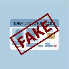 New Brunswick Fake ID attorney